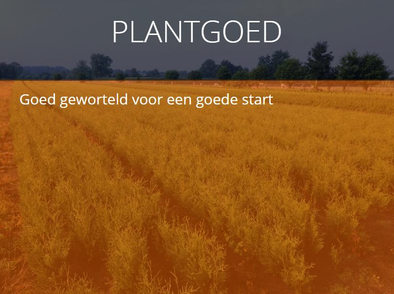 Plantgoed l.s.w.